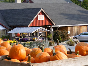 Pumpkins, produce, fresh turkeys, and baked goods at Weber's Cider Mill Farm in Parkville, Maryland, NE Baltimore.